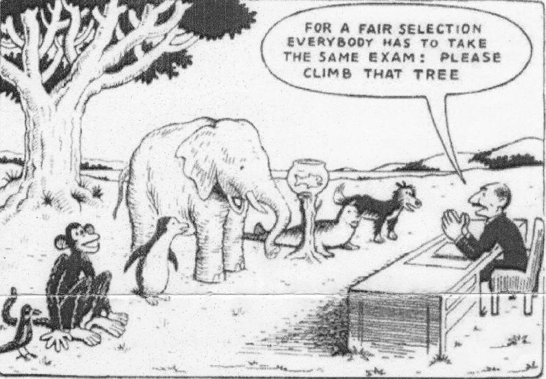 Inclusive  cartoon