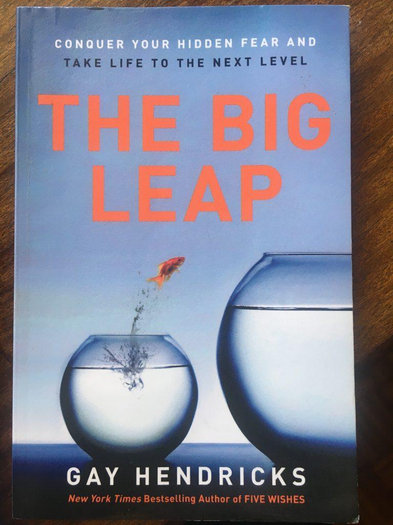big leap books