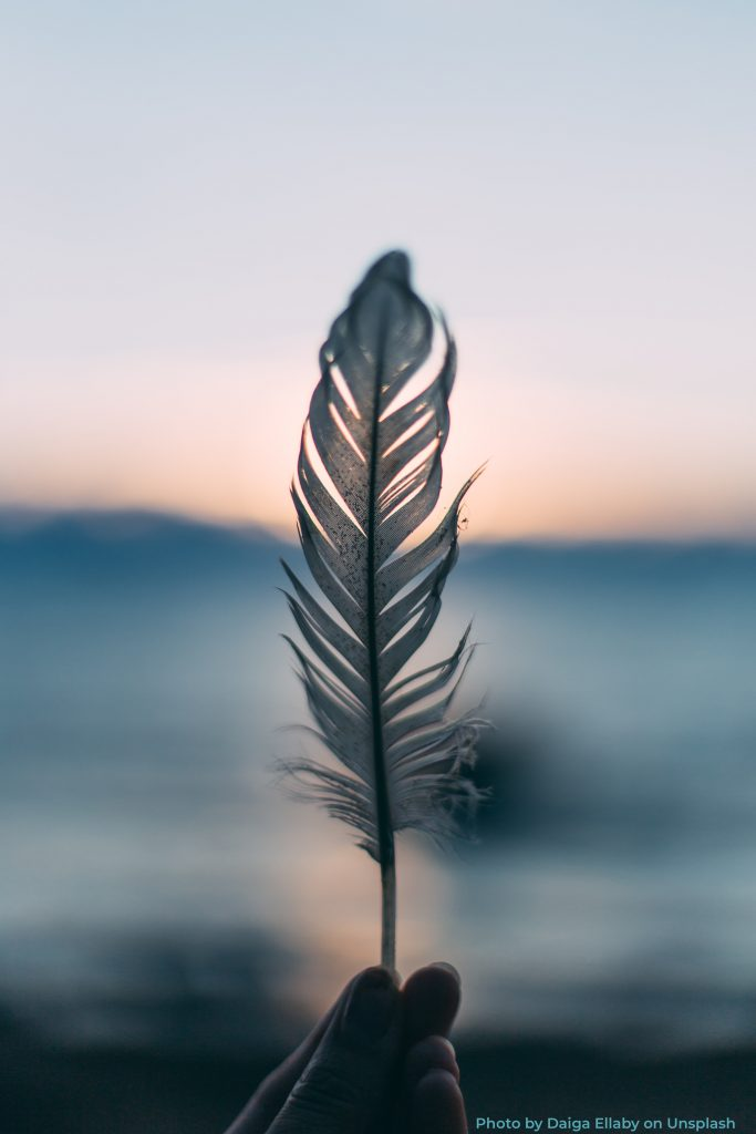 Refeather feather